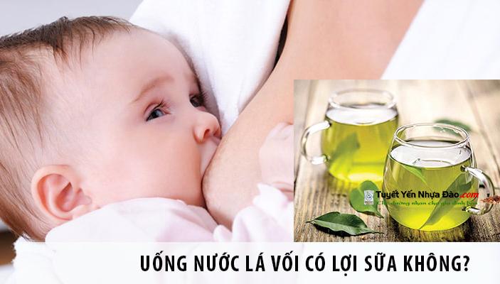 Lá vối giúp lợi sữa