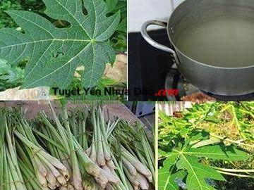 Nấu nước lá đu đủ với sả